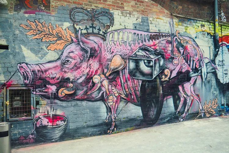 Image of intricate illustration-style street art of pig in pink and grey in Melbourne