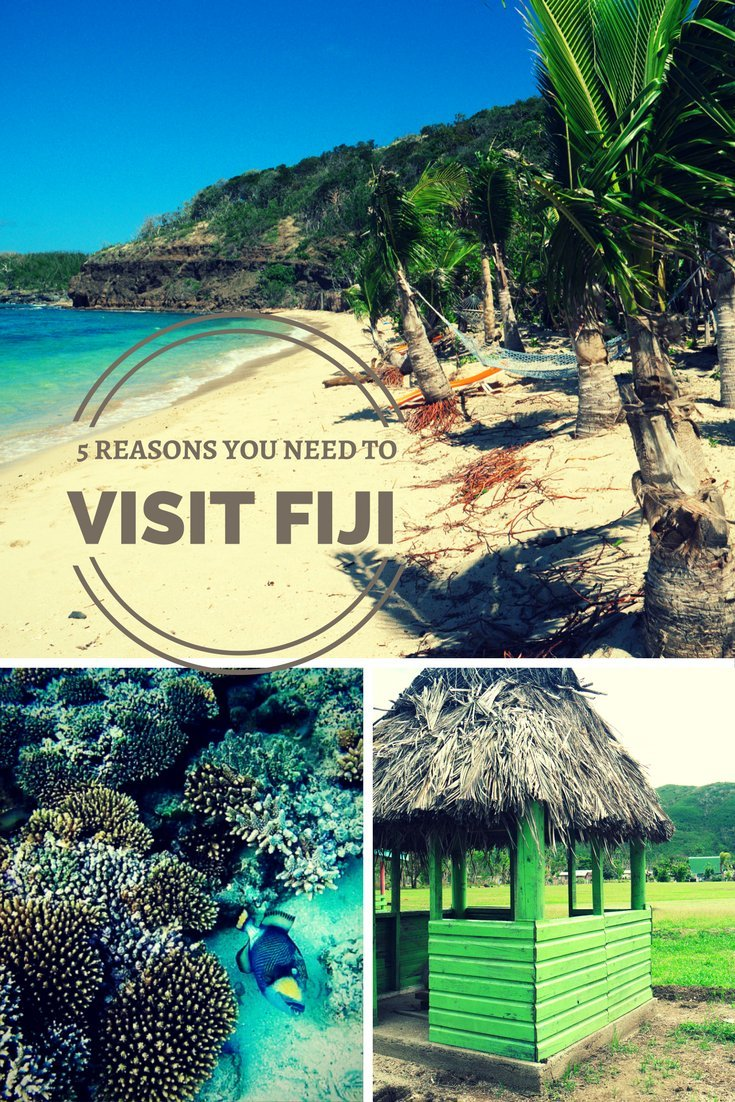 Fiji is a tropical paradise that will capture your heart. Not that you need any more convincing here are some reasons it's the perfect place for a trip of a lifetime