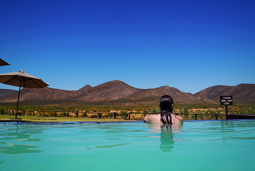 What it's like to go on safari in South Africa   Kat is Travelling