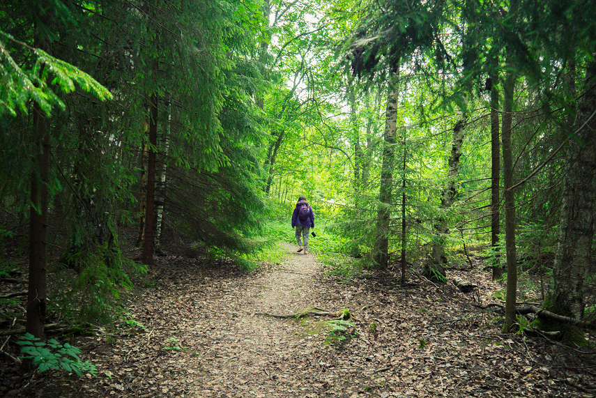 Two days in Tampere - a hidden gem of Southern Finland | Kat is Travelling