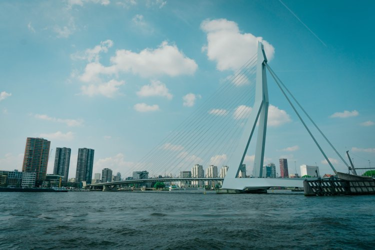 Image of very modern erasmus bridge and the water with rotterdam city skyline in the background